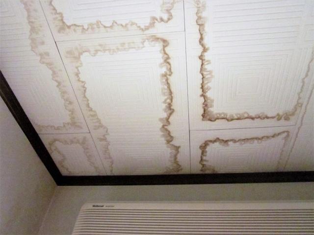 天井からの雨漏り被害