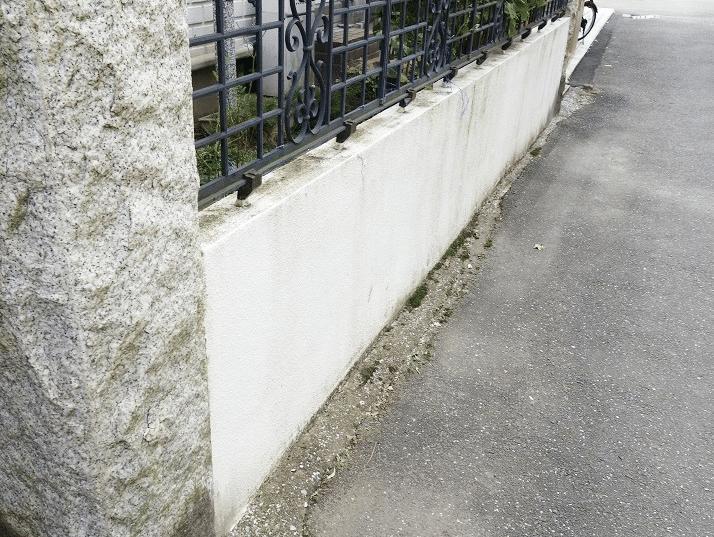 コケで汚れた門塀